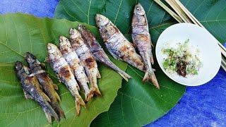 CÁ SUỐI NƯỚNG | Grilled Fish Recipe