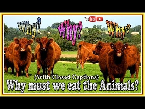 WHY MUST WE EAT THE ANIMALS?