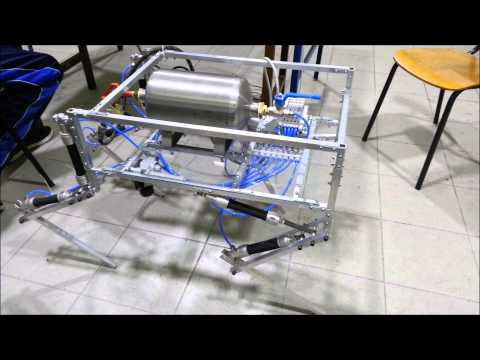 Walking Robot Actuated by Pneumatic Artificial Muscles