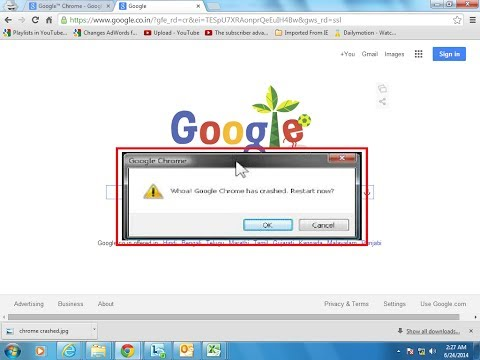 Google™ Chrome error: