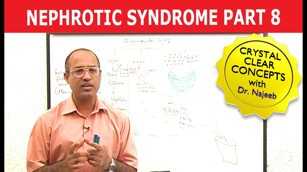 Dr Najeeb Lectures Cardiac Physiology Video