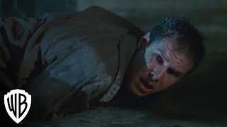 Blade Runner 30th Anniversary Edition- Deckard Vs. Pris