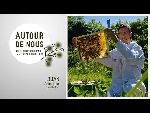 Autour de Nous - Épisode 1 - Juan - Apiculteur au Haillan