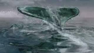 Whales Of Atlantis By Aschera