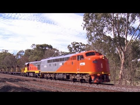 El Zorro T342 &amp; S302 with rail reclamation train - Australian EMD Diesel Locomotives  part 6