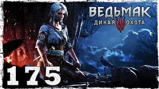 [PS4] Witcher 3: Wild Hunt. #175: Белый хлад. [ФИНАЛ]