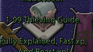 Best RS Thieving Guide 1-99 Fast And Easy!