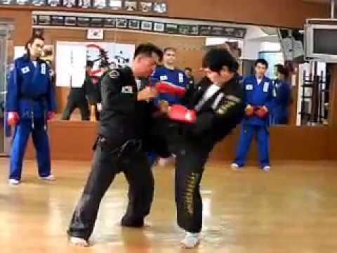 (52)shield training & light sparring Gongkwon Yusul(Korea jiu jitsu Hapkido)