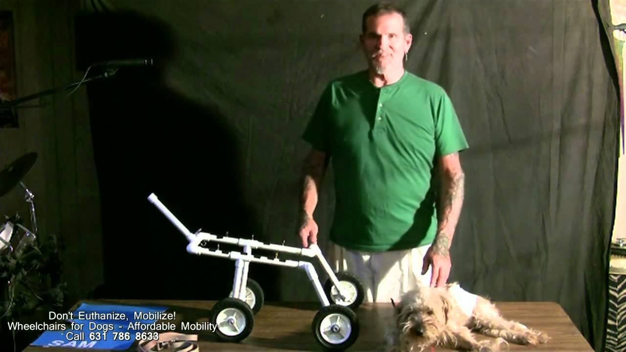 how to make a homemade prosthetic leg for a dog