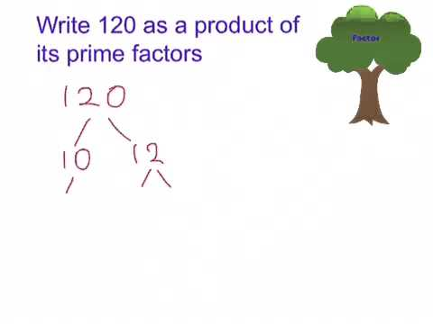 write the expression below as a product of two factors.(6m+8n+4)