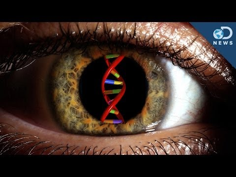 Can Gene Therapy Cure Blindness?