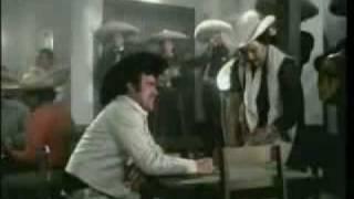 Vicente Fernández - Escucha Las Golondrinas