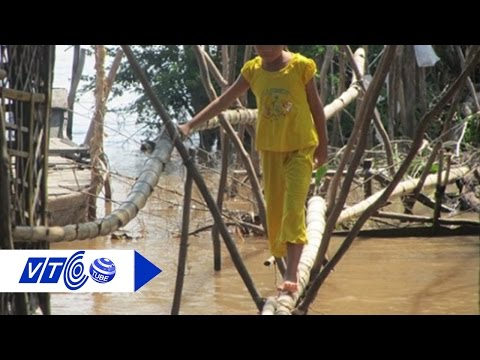 Mong manh cầu tre vùng rốn lũ | VTC