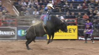 Professional bull riding hits NYC