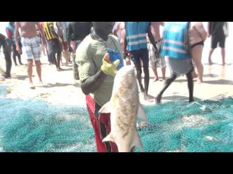 The Hidden Beauty - Gambia 2014