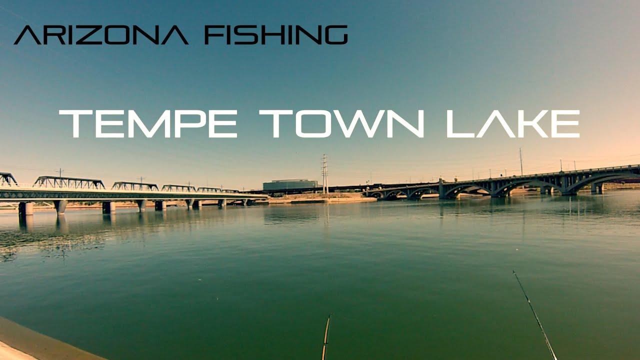 Arizona fishing at tempe town lake youtube for Tempe town lake fishing