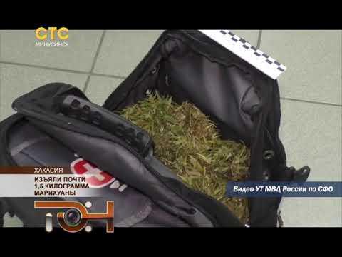 Изъяли почти 1,5 килограмма марихуаны