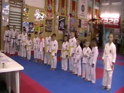 Аттестационный экзамен 31.07.2016 г. по каратэ в клубе Тигренок ч. 2