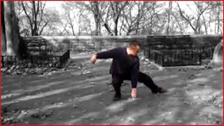 Tai Chi Cheng Man Ching's Yang Short Form