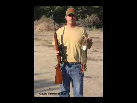 Cottontail Rabbit Shot with a 5mm Remington Rimfire - Centurion Ammo