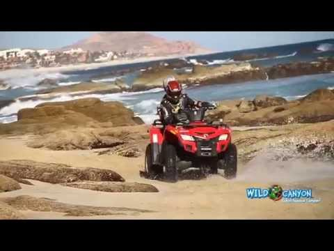 Off Road Runners ATV's Wild Canyon Los Cabos Mexico