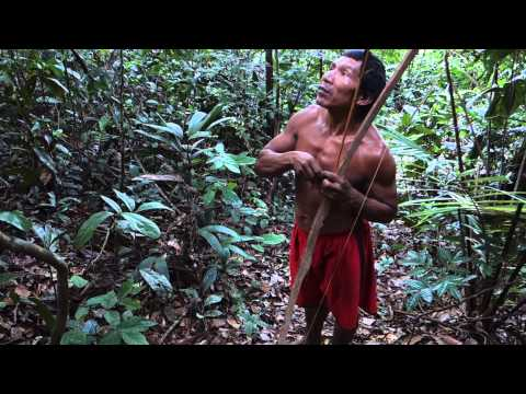 Sobreviviencia na Selva Amazonia Indio Tatuyo Amazonas Indian Jungle Amazon Brasil Brazil 3)