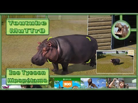 Zoo Tycoon - #07 - Hipopótamo - Xbox One - PT-BR