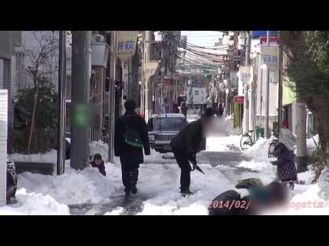 Japan Trip 2014 Tokyo 27cm Heavy snow 45 years since, the day after people are shoveling snow. のコピー