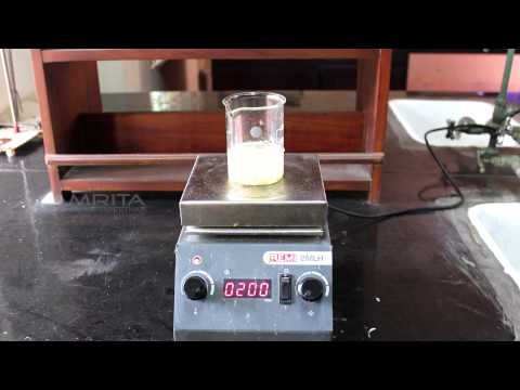 Detection of Starch in Food Samples - OLabs - Amrita University