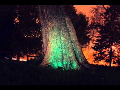 Sun Control Species & Behind Blue Eyes - Second Sunrise (Iboga Rec 2010)