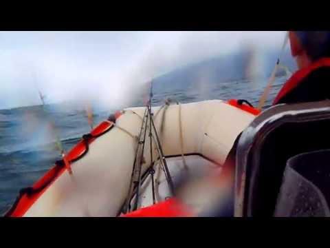 Tsunami em Alto Mar -