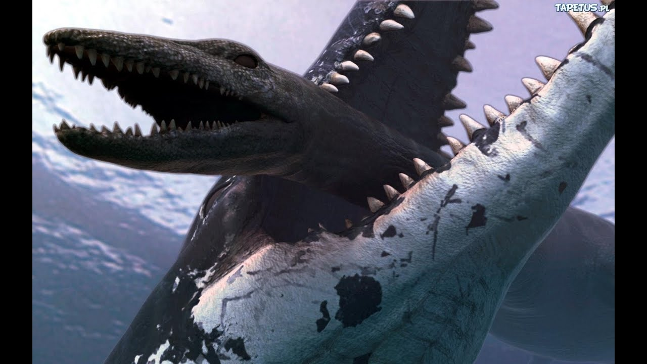 Battlefield 4 : The Megalodon shark ? Im looking for the shark - YouTube
