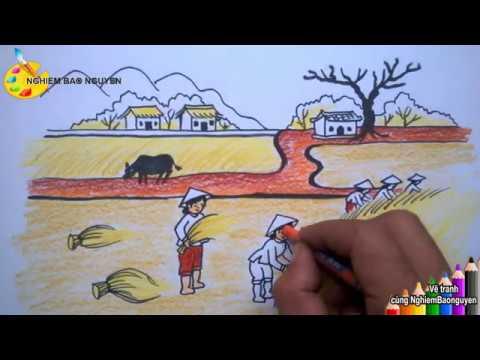 Vẽ tranh gặt lúa/How to draw Harvest