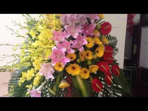 Lẵng hoa tươi, mẫu hoa mới