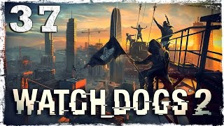 Watch Dogs 2. #37: Время для мести.