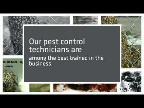 Weed Control phoenix az | 602-459-9711