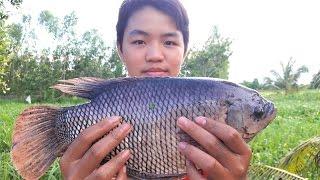 Quăng Chài Bắt Cá Và Món Cháo Cá Rau Đắng Ngon Tuyệt