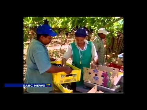 World Food Day, SA joins in celebrating -video
