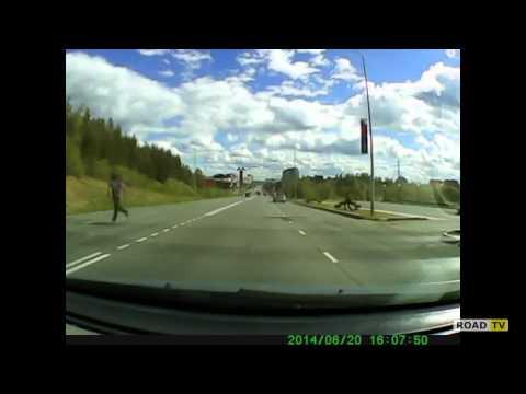 Баран Боря атакует автомобиль