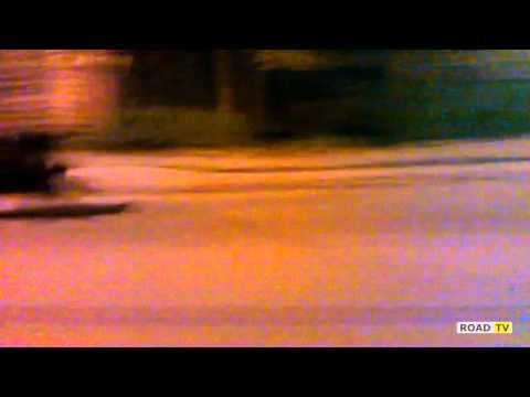 Дикий кабан рассекал по Питеру на скорости 70 км/ч