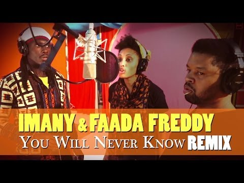 You Will Never Know (REMIX) - feat. Faada Freddy