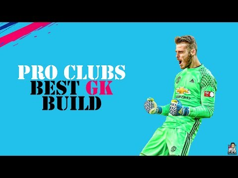 FIFA 19 PRO CLUBS BEST GK BUILD & TRAITS + TIPS