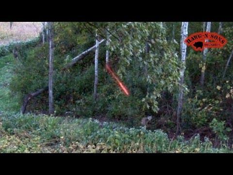 Whitetail Deer - Self-Filmed Coyote Kill Shot October 4 - 8 2013