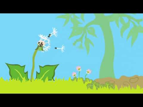 Dandelion life cycle animation - YouTube