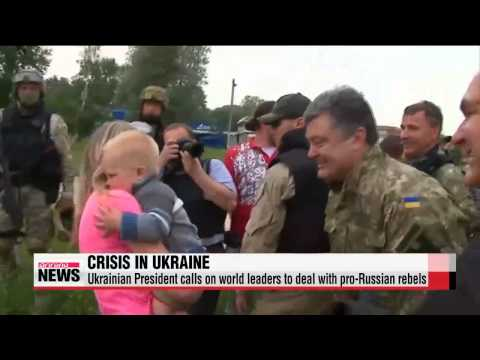 Unilateral ceasefire fails to stop fighting in Ukraine
