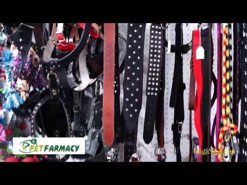 Pet Farmacy | Pet Shop Αιγάλεω,Τροφές,Αξεσουάρ,γάτες,σκυλιά,τρωκτικά,πτηνά,ψάρια,φάρμακα