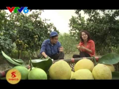 Hình ảnh trong video SRTL VTV6] Nguyễn Văn Bách Thủ lĩnh