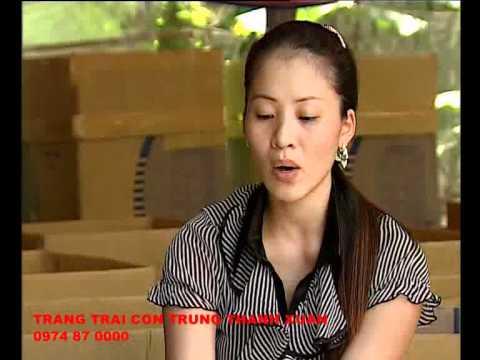 Video Kỹ thuật nuôi dế - VTV2 phát sóng - phần 1