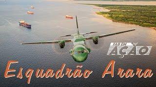 Você vai acompanhar o dia a dia dos tripulantes do Esquadrão de Transporte Arara, que opera com aeronave C-105 na região Norte do país. Embarque conosco nesta viagem cheia de desafios em meio a selva amazônica. Clima adverso, o pouso em pistas de terra, curtas e onduladas, nada desanima os Araras. Pilotos e mecânicos apaixonados por um trabalho marcado pela solidariedade, os Araras são velhos conhecidos das populações ribeirinhas, dos pelotões do Exército na fronteira e das comunidades indígenas.Bom voo !