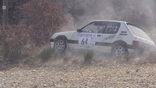Vid�o Rallye de Haute Provence 2014 crash and show par Luminy 13 (148 vues)